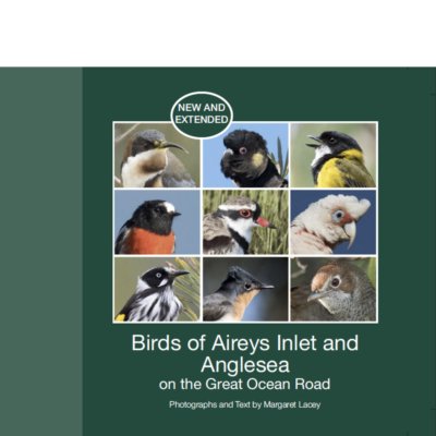 Birds of Aireys Inlet and Anglesea: on the Great Ocean Road